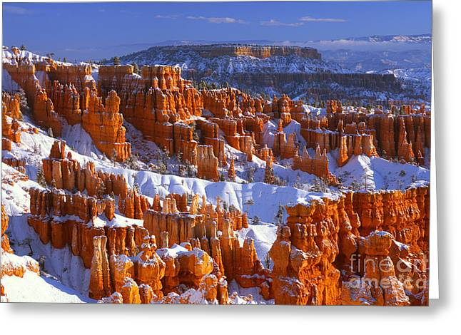 Bryce Canyon In Winter Greeting Card