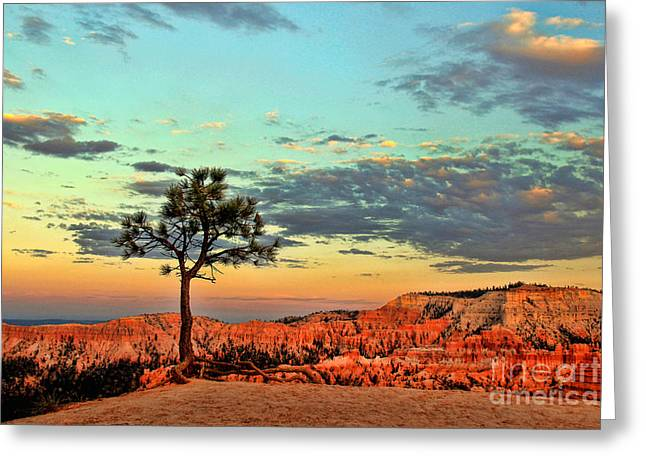 Bryce Canyon Greeting Card by Leslie Kirk