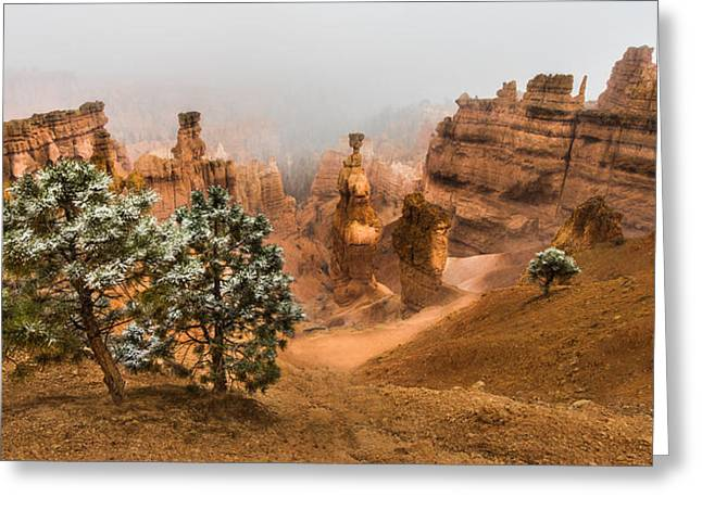 Bryce Canyon National Park Greeting Card by Larry Marshall