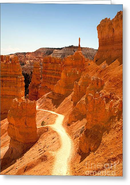 Bryce Canyon Trail Greeting Card