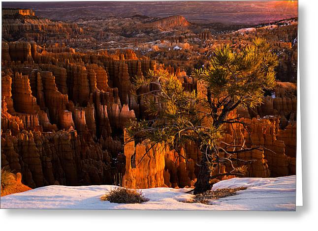 Bryce Canyon Winter Sunrise Greeting Card by Leland D Howard