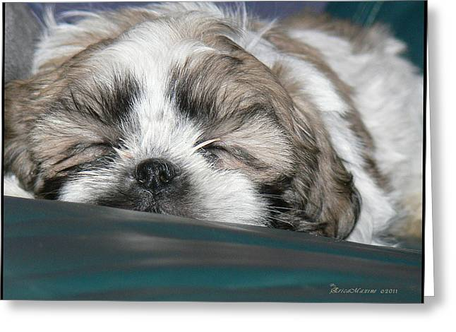 Greeting Card featuring the photograph Bubba by EricaMaxine  Price