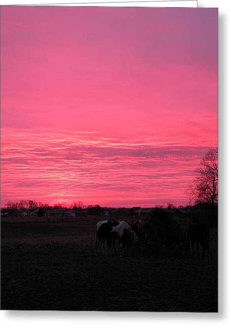 Greeting Card featuring the photograph Bubble Gum Sunrise by Carlee Ojeda