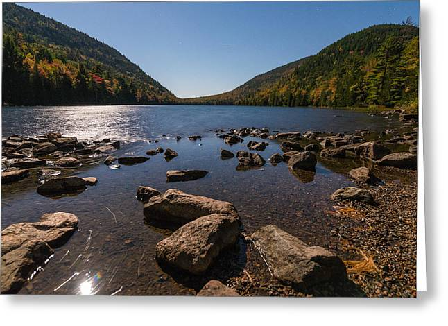 Bubble Pond Greeting Card by Kristopher Schoenleber