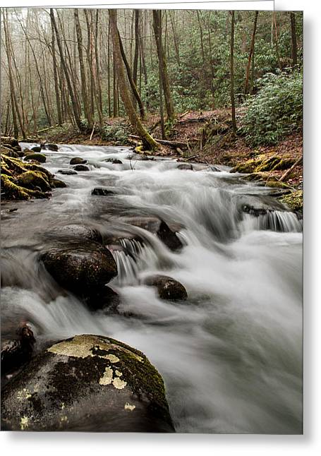 Bubbling Mountain Stream Greeting Card