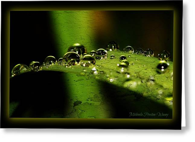 Greeting Card featuring the photograph Bubbly by Michaela Preston