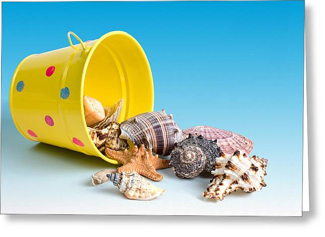 Bucket Of Seashells Still Life Greeting Card