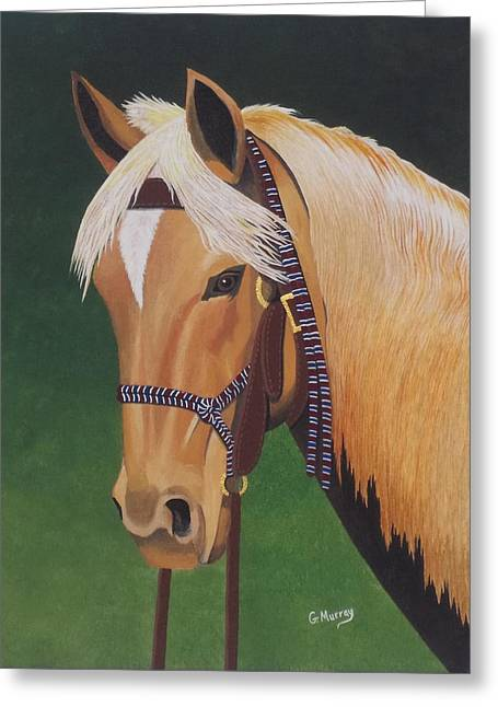 Buckskin Horse Greeting Card