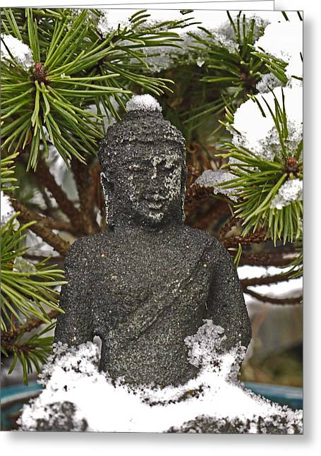 Buddha In The Snow Greeting Card