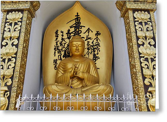 Buddha Statue At The World Peace Pagoda Pokhara Greeting Card by Robert Preston