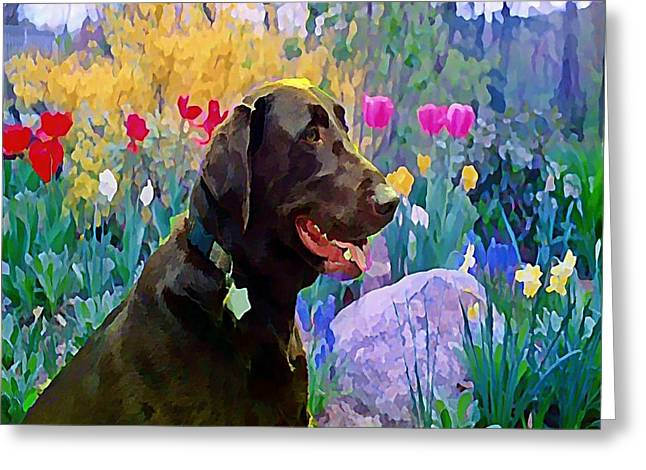 Buddy In Heaven Greeting Card by Anne Sterling