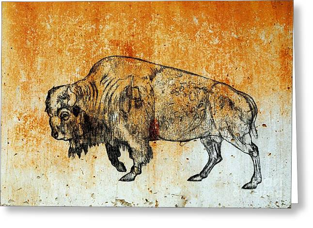 Greeting Card featuring the drawing Buffalo 8 by Larry Campbell
