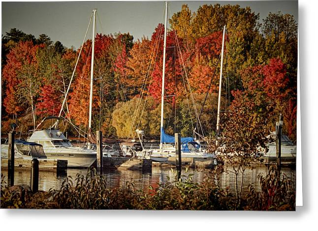 Buffalo Bay Marina 2 Greeting Card by Thomas Young