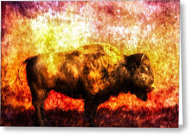 Buffalo Greeting Card by Bob Orsillo