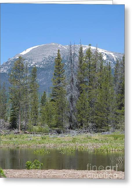 Buffalo Mountain Greeting Card