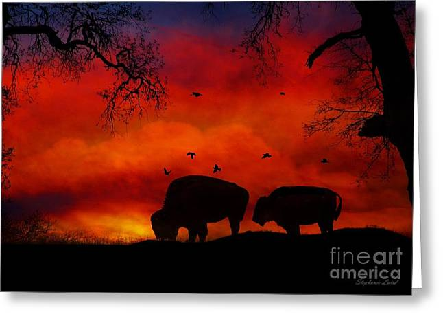 Buffalo Sunset Greeting Card by Stephanie Laird