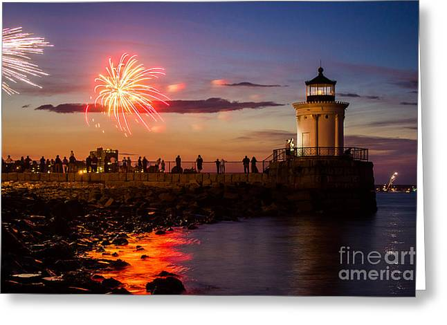 Bug Light Fireworks Greeting Card by Benjamin Williamson