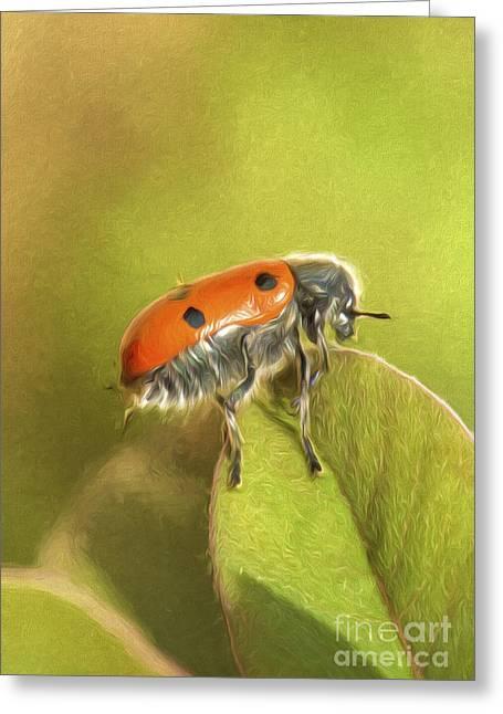 Bug On Leave Greeting Card by Perry Van Munster