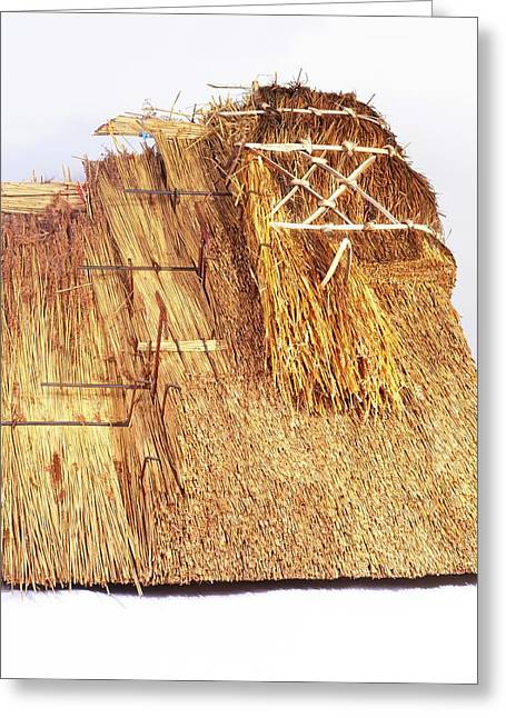 Building A Thatched Roof Greeting Card
