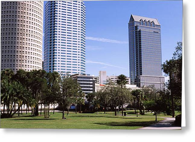 Buildings In A City Viewed From A Park Greeting Card by Panoramic Images