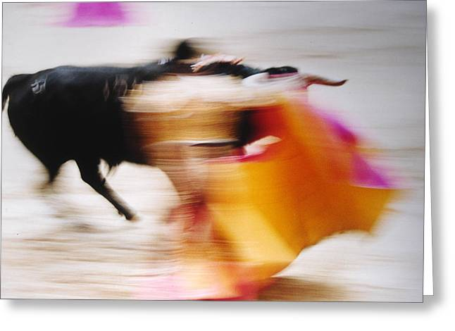 Bullfight  4 Greeting Card by Daniel Gomez