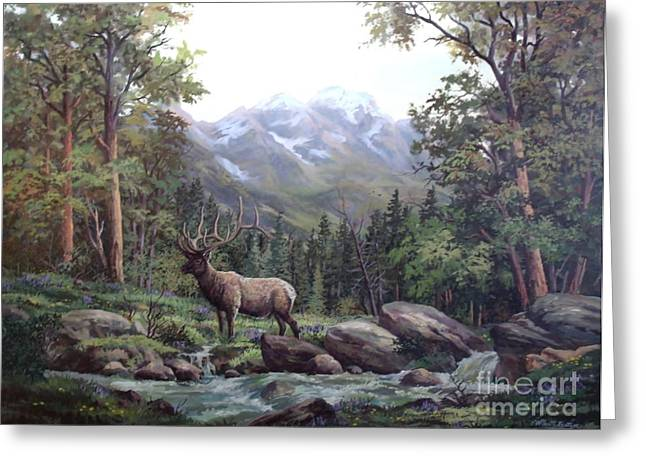 Bull Meadow Greeting Card by W  Scott Fenton