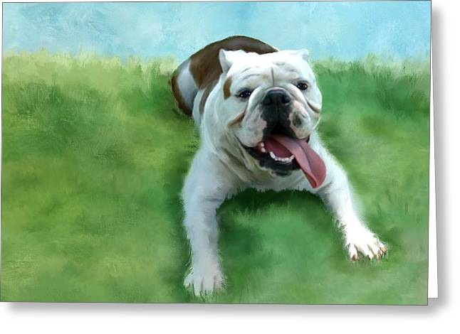 Bulldog Greeting Card by Colleen Taylor
