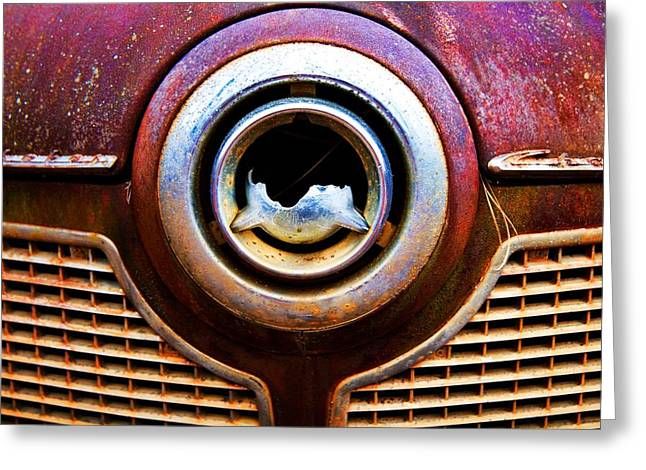 Bullet Nose Greeting Card by Norm Hoekstra