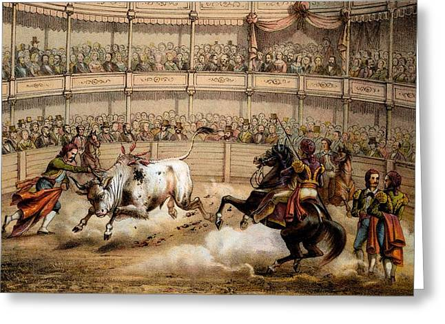 Bullfight Greeting Card by Federico Mialhe