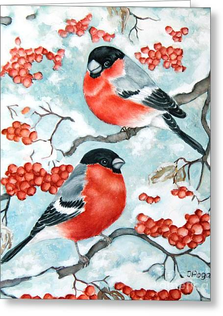 Bullfinch Couple Greeting Card