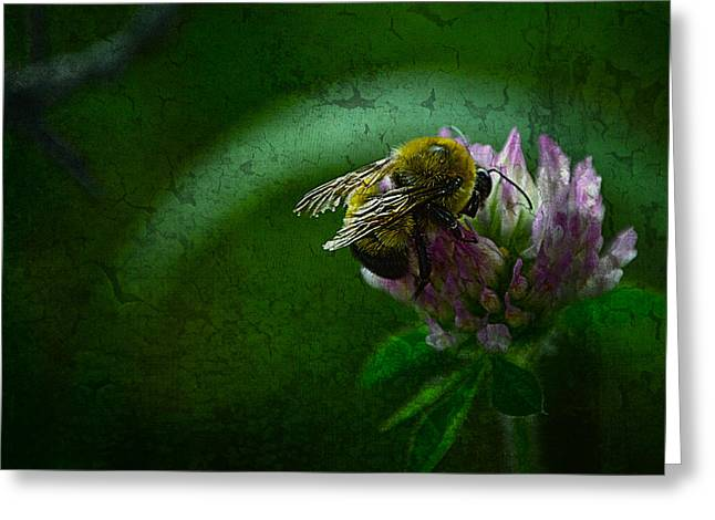 Bumble Bee Tattered Wings Art 2 Greeting Card