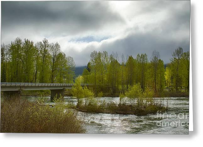 Bumblebee Bridge Greeting Card by Idaho Scenic Images Linda Lantzy