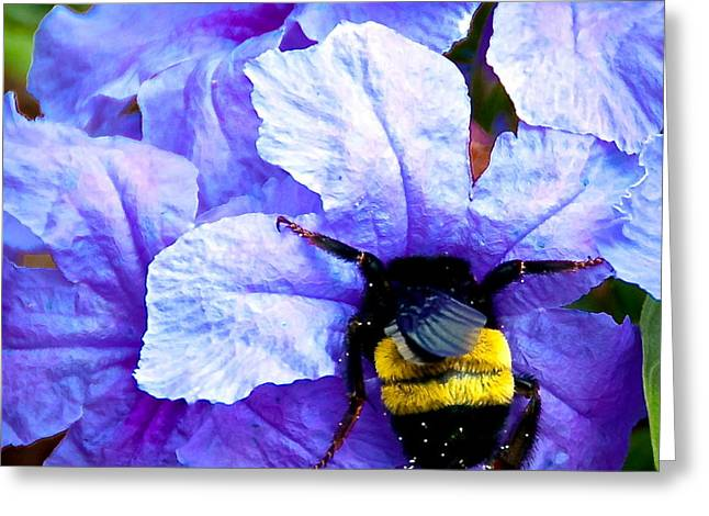 Bumblebee Brunch Greeting Card by Dee Dee  Whittle