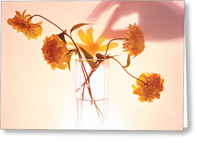 Bunch Of Yellow Flowers Greeting Card