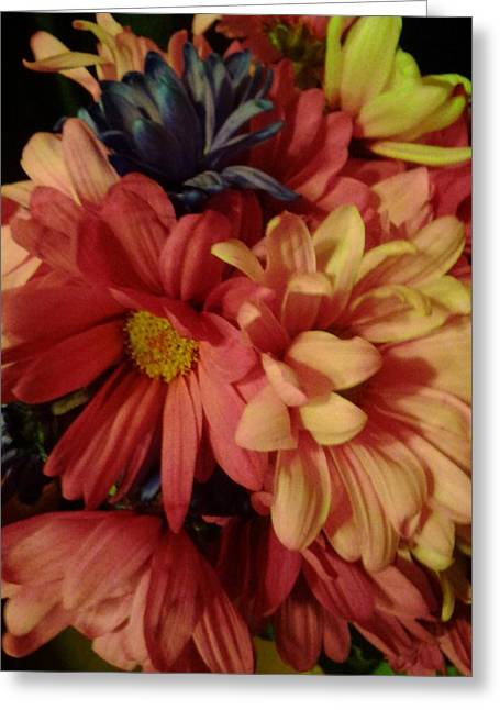 Bunched Daisies Greeting Card by Erica  Darknell