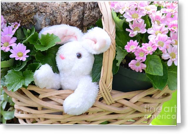 Bunny In A Basket Greeting Card by Kathleen Struckle
