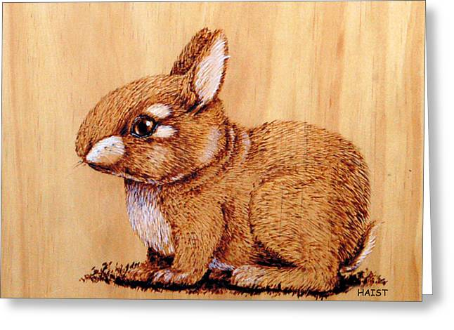 Bunny Greeting Card by Ron Haist