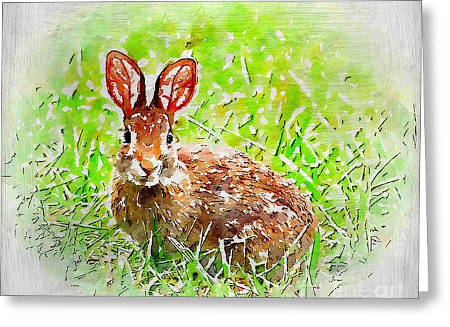 Bunny - Watercolor Art Greeting Card by Kerri Farley