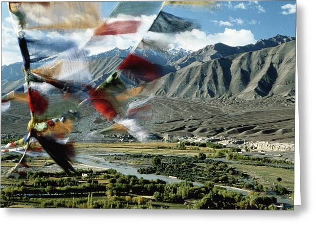 Bunting Flying In Sky With Kunlun Greeting Card