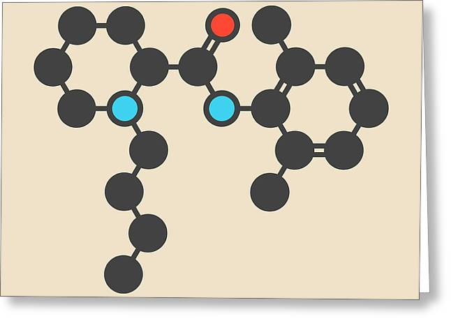 Bupivacaine Anesthetic Drug Molecule Greeting Card