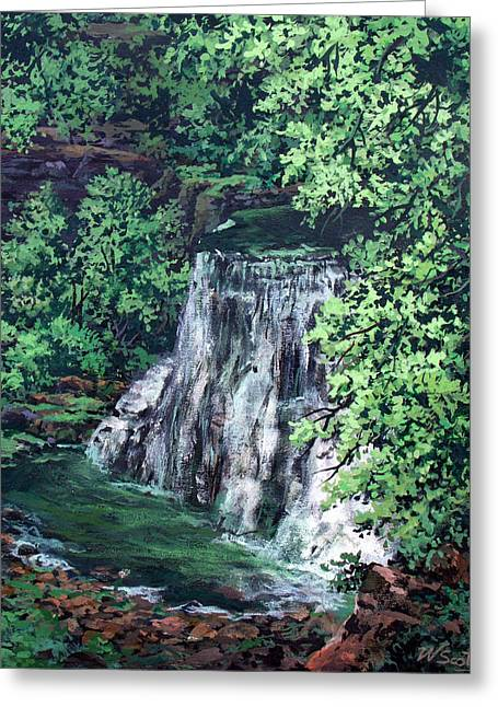 Burgess Falls State Park Tn. Greeting Card by W  Scott Fenton