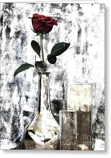 Burgundy Beauty Rose Greeting Card by Marsha Heiken