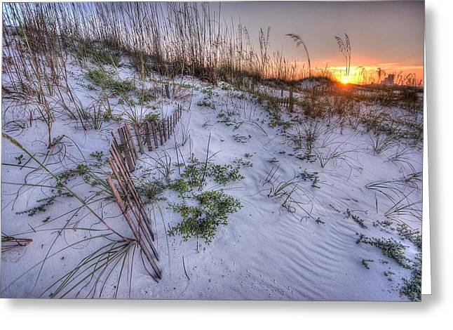 Buried Fences Greeting Card by Michael Thomas