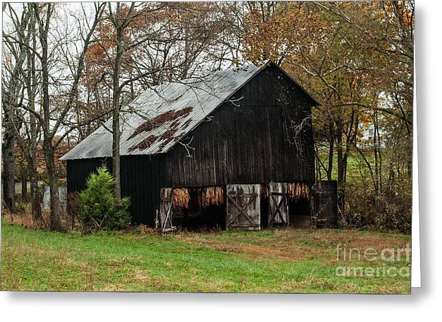 Greeting Card featuring the photograph Burley Tobacco  Barn by Debbie Green