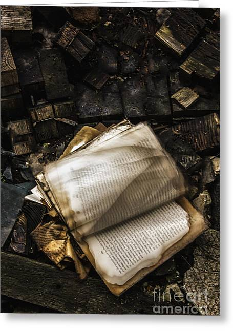 Burning Books Greeting Card by Margie Hurwich