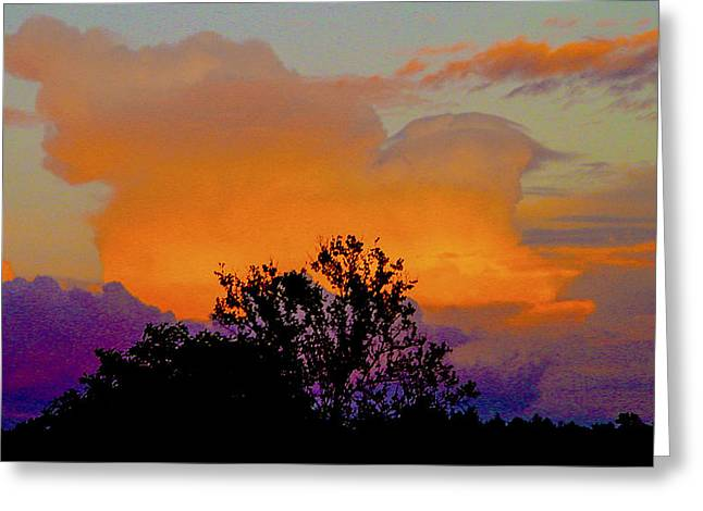 Burning Bush Greeting Card by Robert J Andler