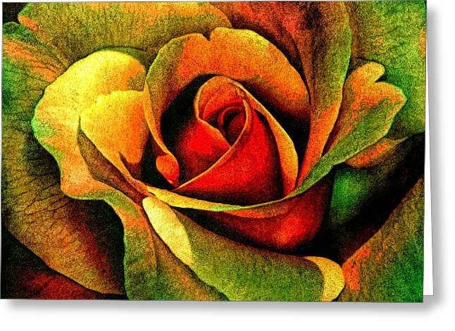 Burning Rose Of Autumn Greeting Card by Georgiana Romanovna