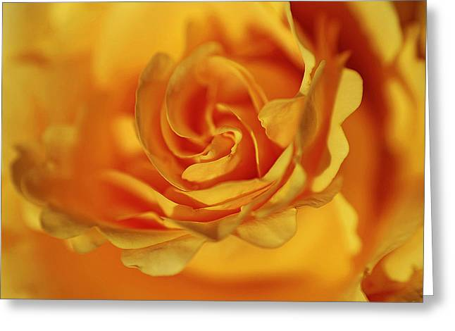 Burning Yellow Greeting Card