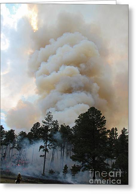 Greeting Card featuring the photograph Burnout Near Song Dog Road by Bill Gabbert