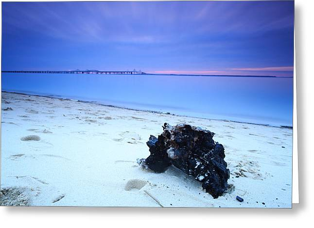 Greeting Card featuring the photograph Burnt Driftwood Sunset by Jennifer Casey